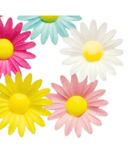 Вафельные декоративный украшения Цветочки ромашка 10 шт